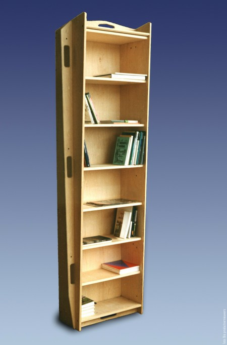 Bookcase-coffin